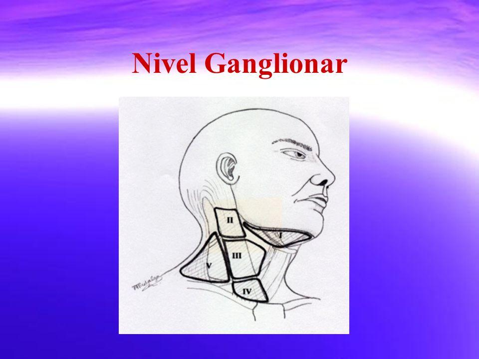 Nivel Ganglionar