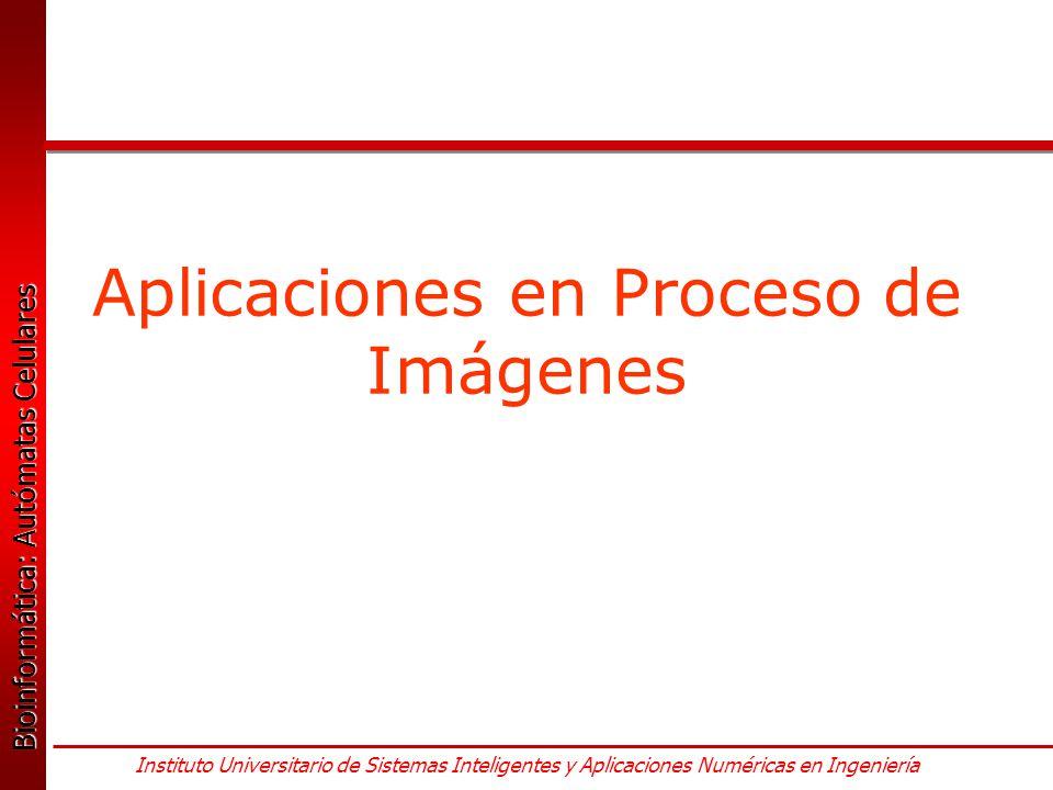 Aplicaciones en Proceso de Imágenes