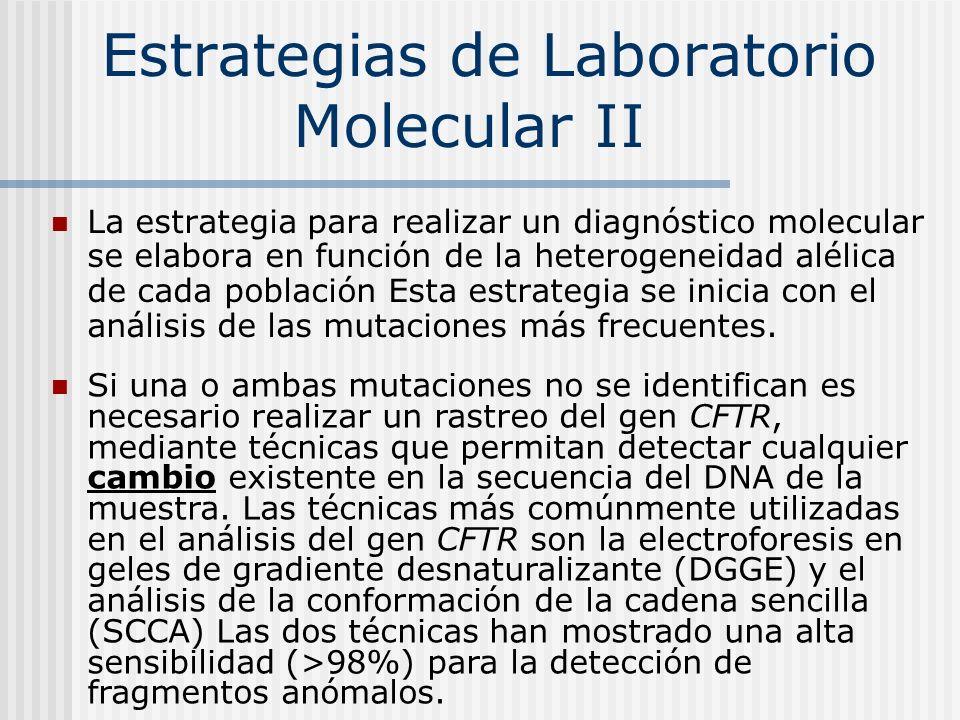 Estrategias de Laboratorio Molecular II