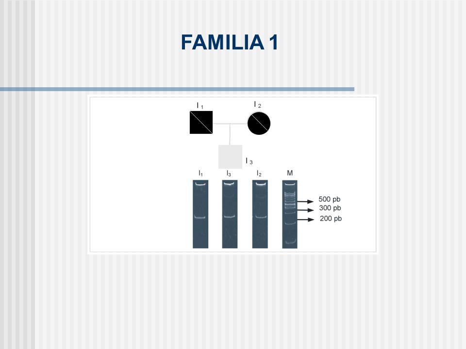 FAMILIA 1