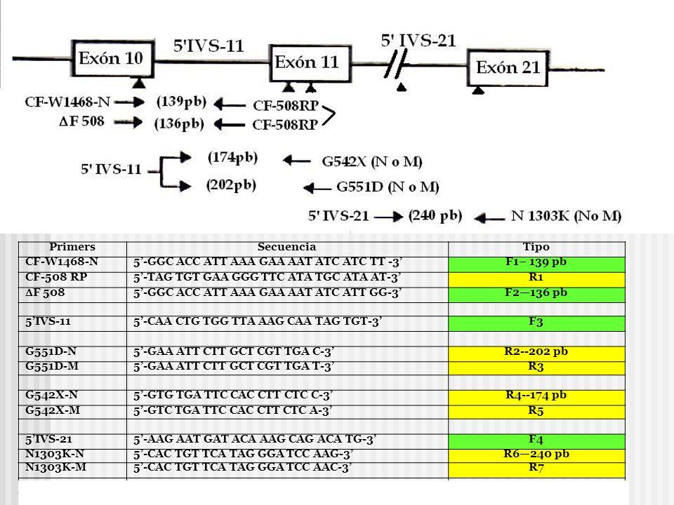 Primers Secuencia. Tipo. CF-W1468-N. 5'-GGC ACC ATT AAA GAA AAT ATC ATC TT -3' F1– 139 pb. CF-508 RP.