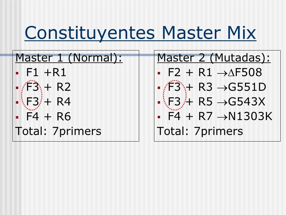 Constituyentes Master Mix