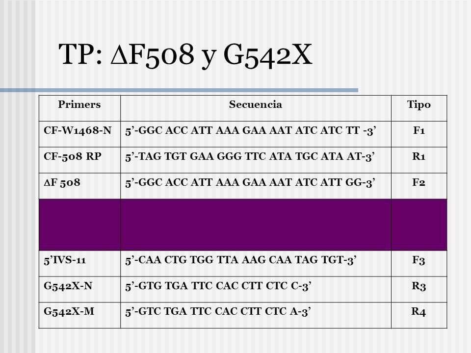 TP: F508 y G542X Primers Secuencia Tipo CF-W1468-N