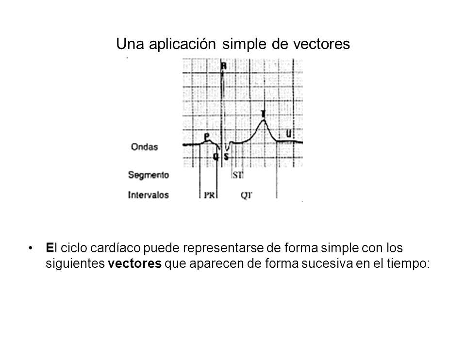 Una aplicación simple de vectores