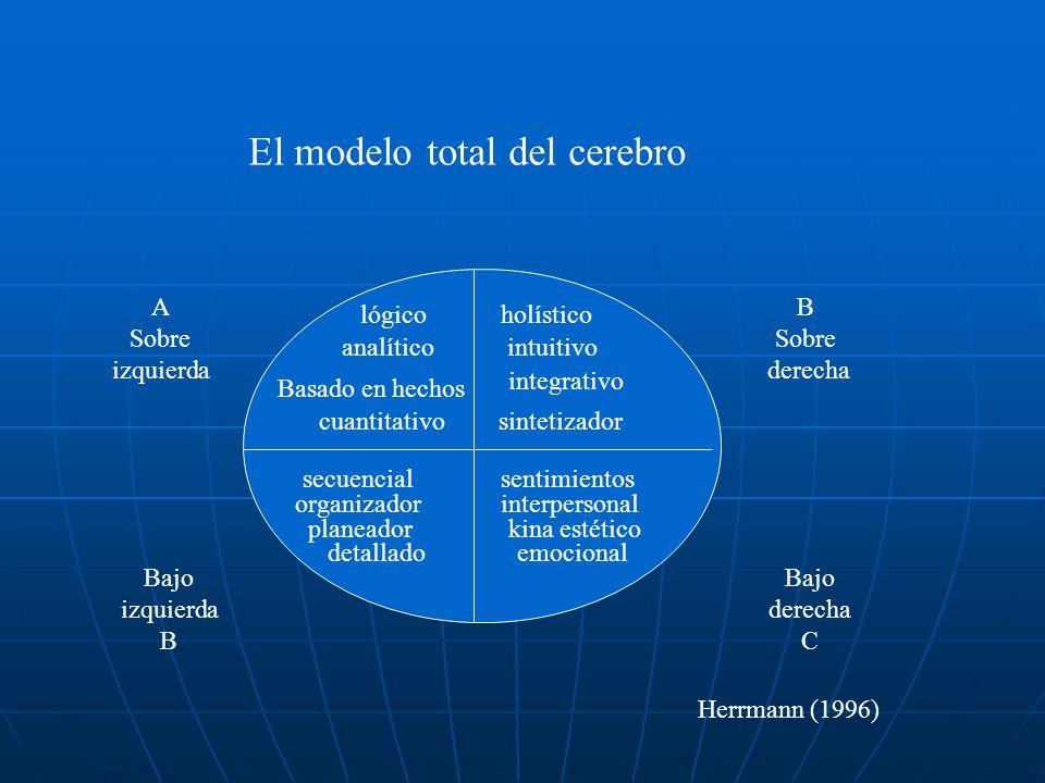 El modelo total del cerebro