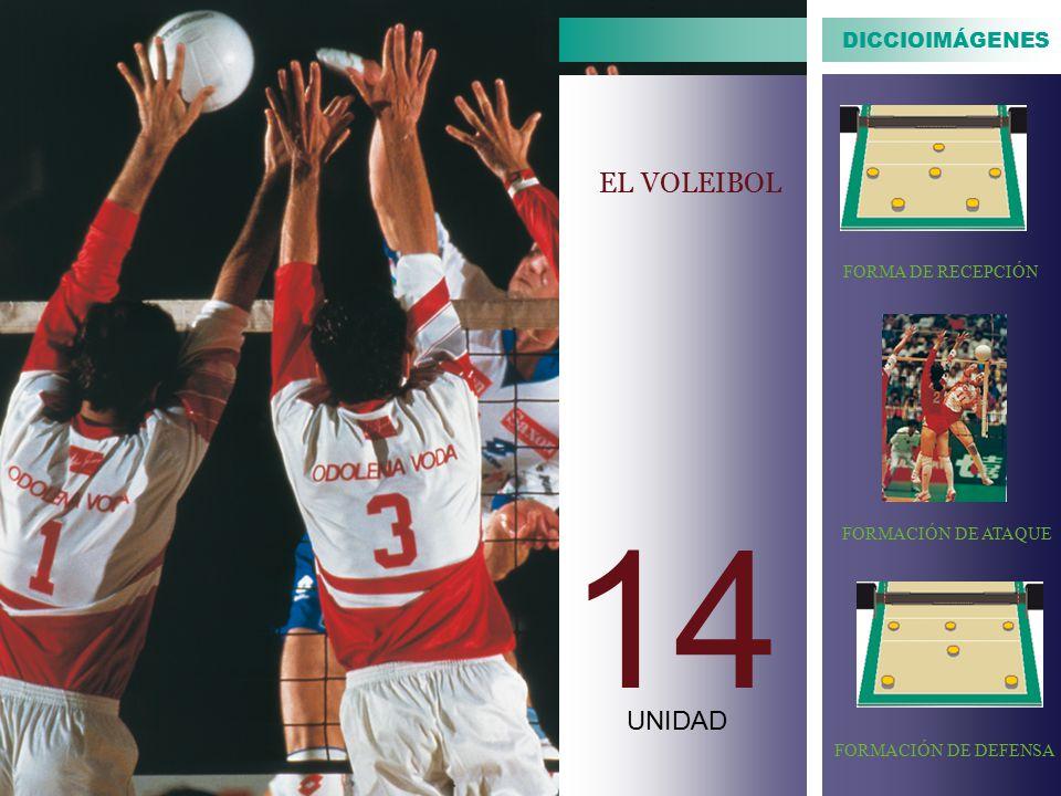 14 EL VOLEIBOL UNIDAD DICCIOIMÁGENES FORMA DE RECEPCIÓN