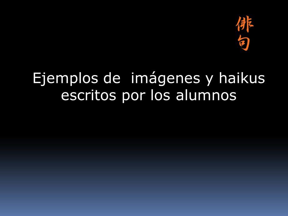 Ejemplos de imágenes y haikus escritos por los alumnos