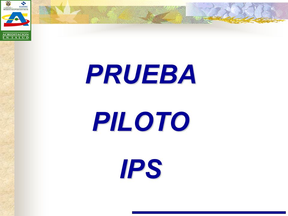 PRUEBA PILOTO IPS
