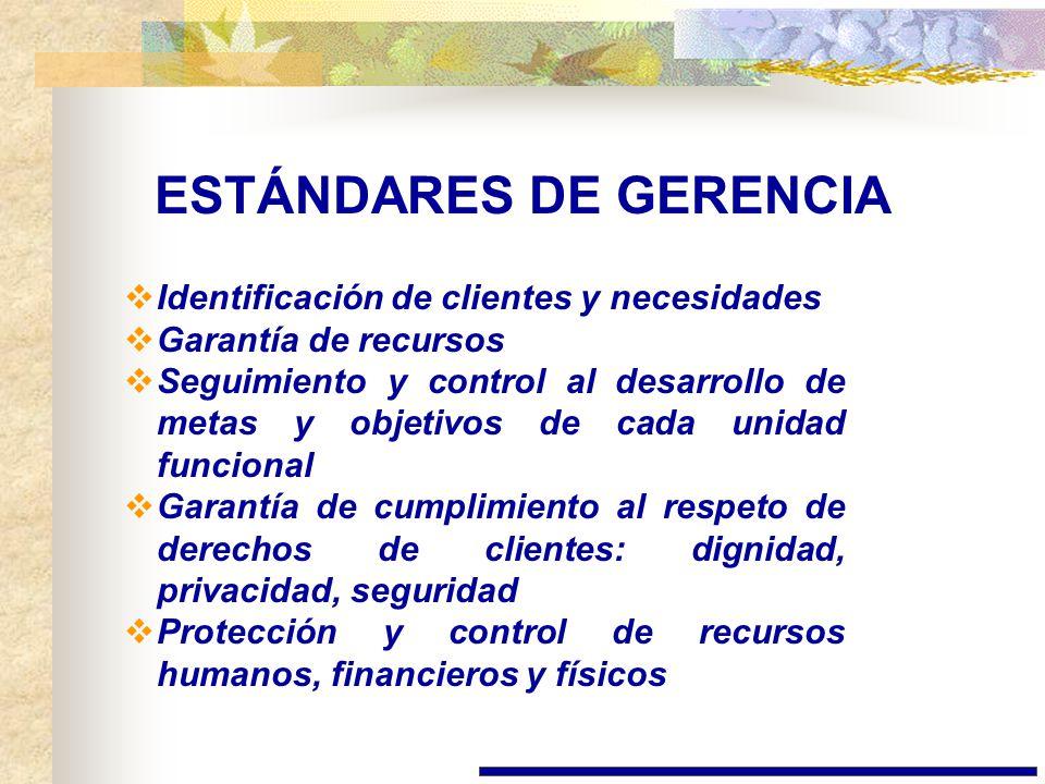 ESTÁNDARES DE GERENCIA