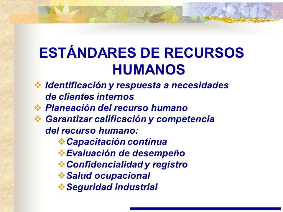 ESTÁNDARES DE RECURSOS HUMANOS