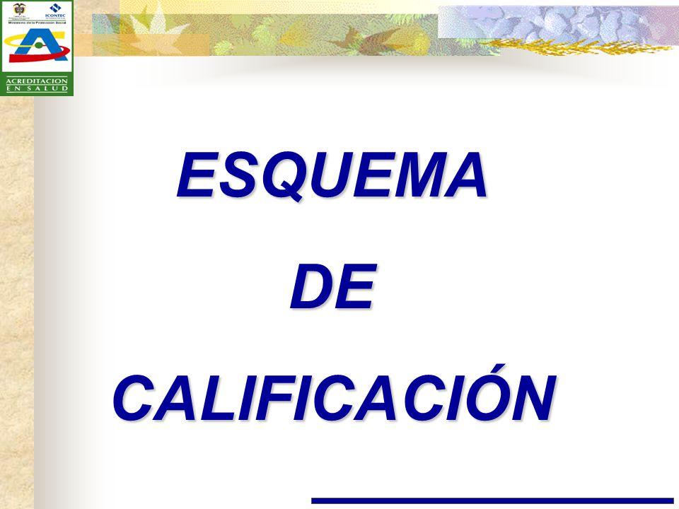ESQUEMA DE CALIFICACIÓN