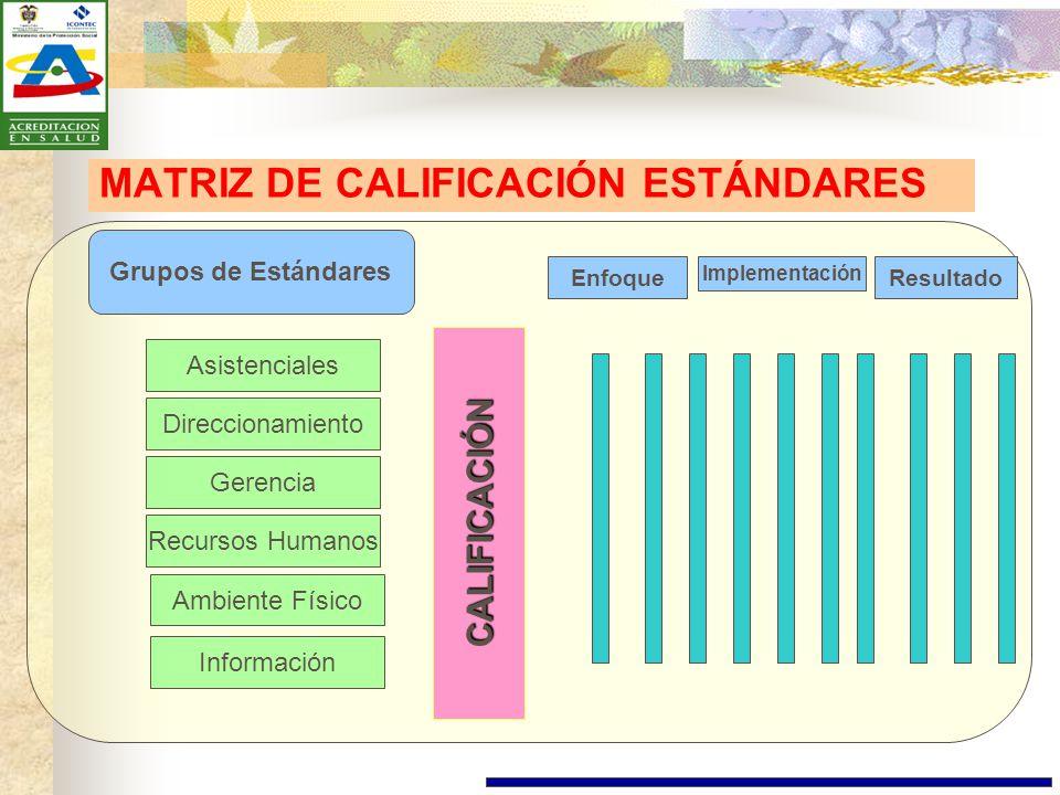 MATRIZ DE CALIFICACIÓN ESTÁNDARES
