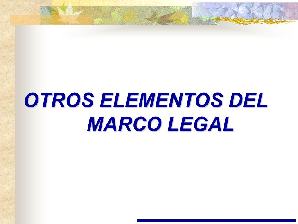 OTROS ELEMENTOS DEL MARCO LEGAL