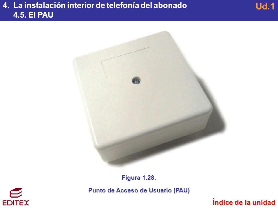 Punto de Acceso de Usuario (PAU)
