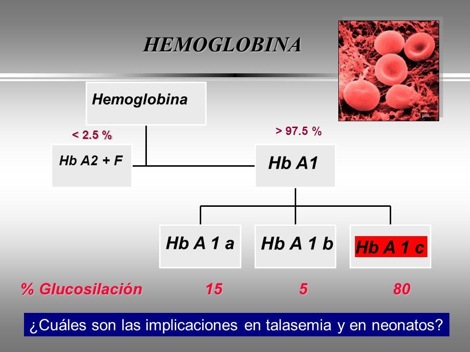 HEMOGLOBINA Hb A 1 b Hb A1 Hb A 1 a Hb A 1 c
