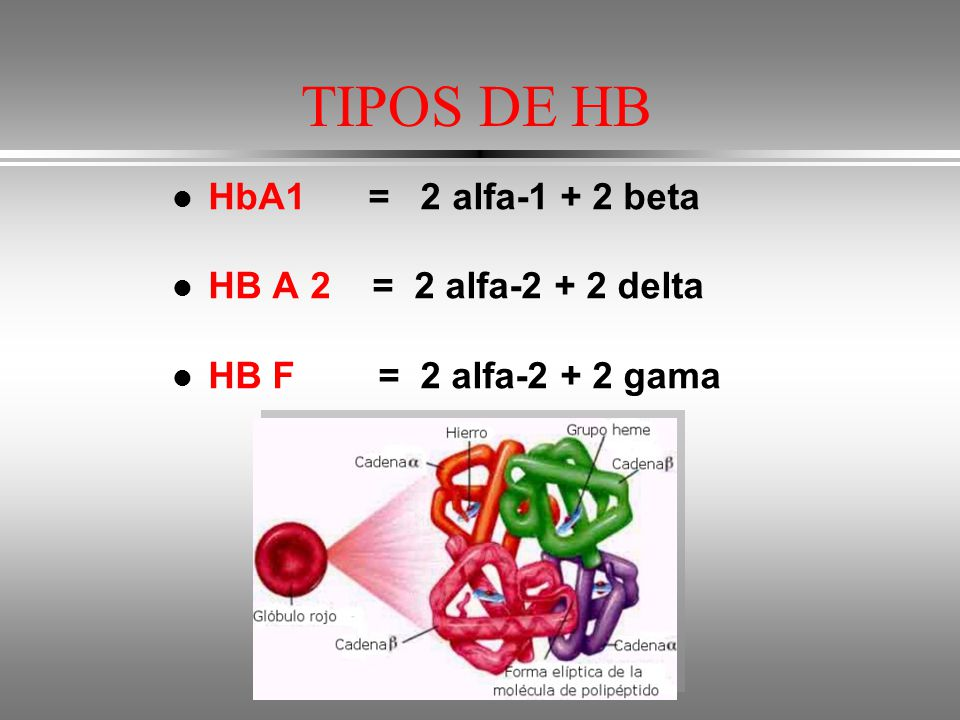 TIPOS DE HB HbA1 = 2 alfa-1 + 2 beta HB A 2 = 2 alfa-2 + 2 delta