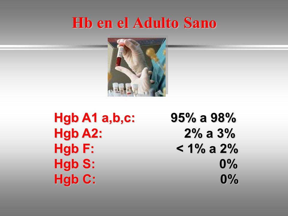 Hb en el Adulto Sano Hgb A1 a,b,c: 95% a 98% Hgb A2: 2% a 3%