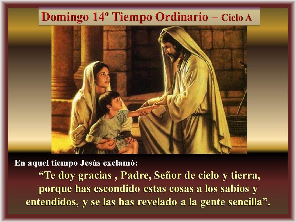 Te doy gracias , Padre, Señor de cielo y tierra,