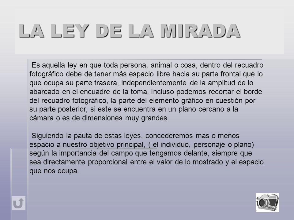 LA LEY DE LA MIRADA