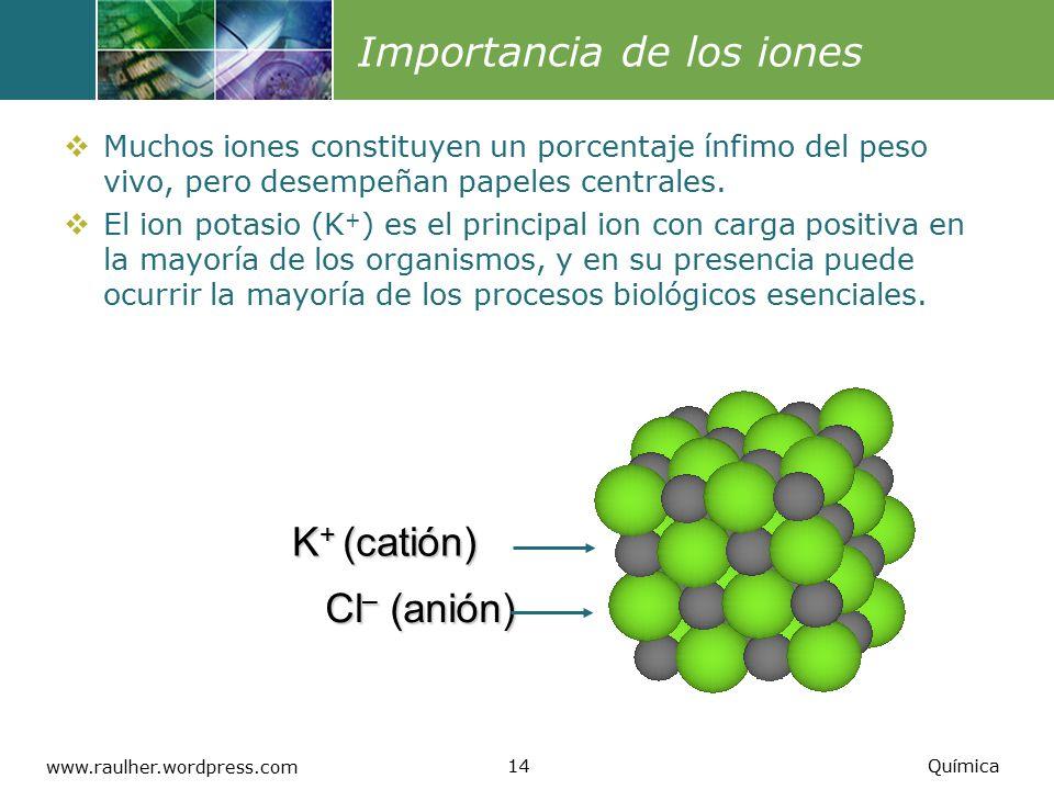Importancia de los iones