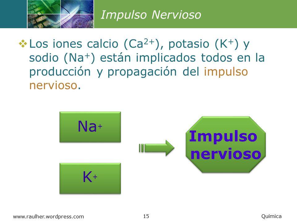 Na+ Impulso nervioso K+ Impulso Nervioso