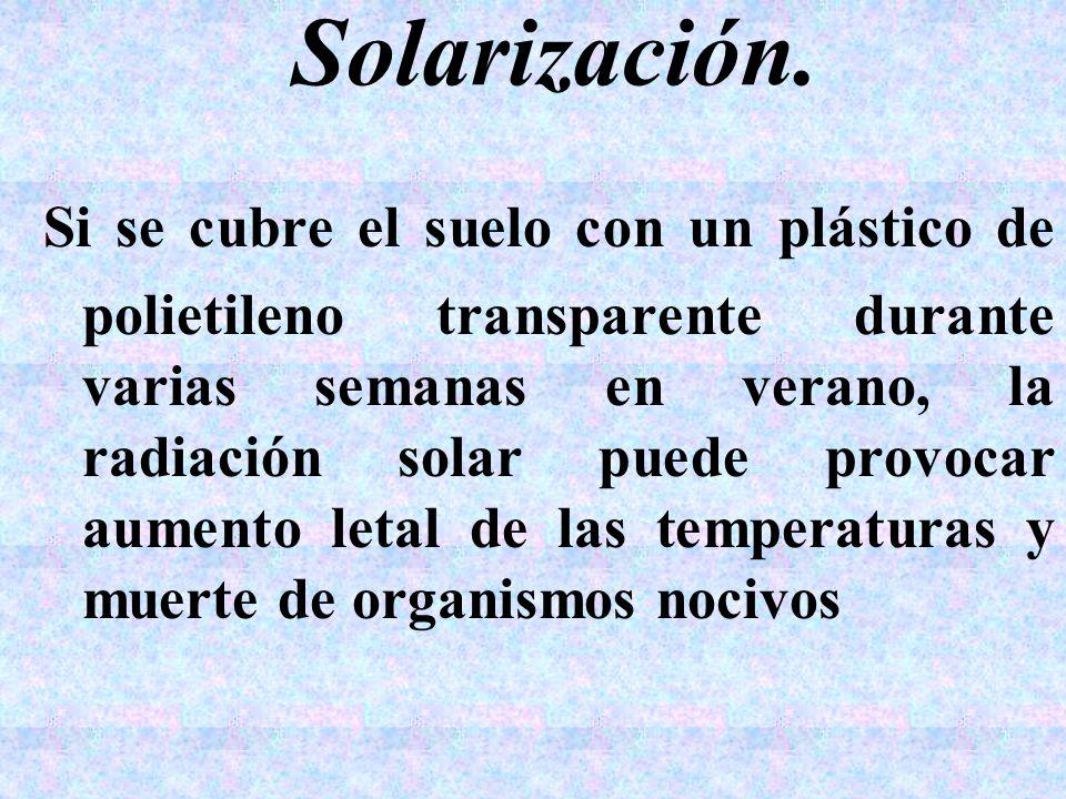 Solarización.