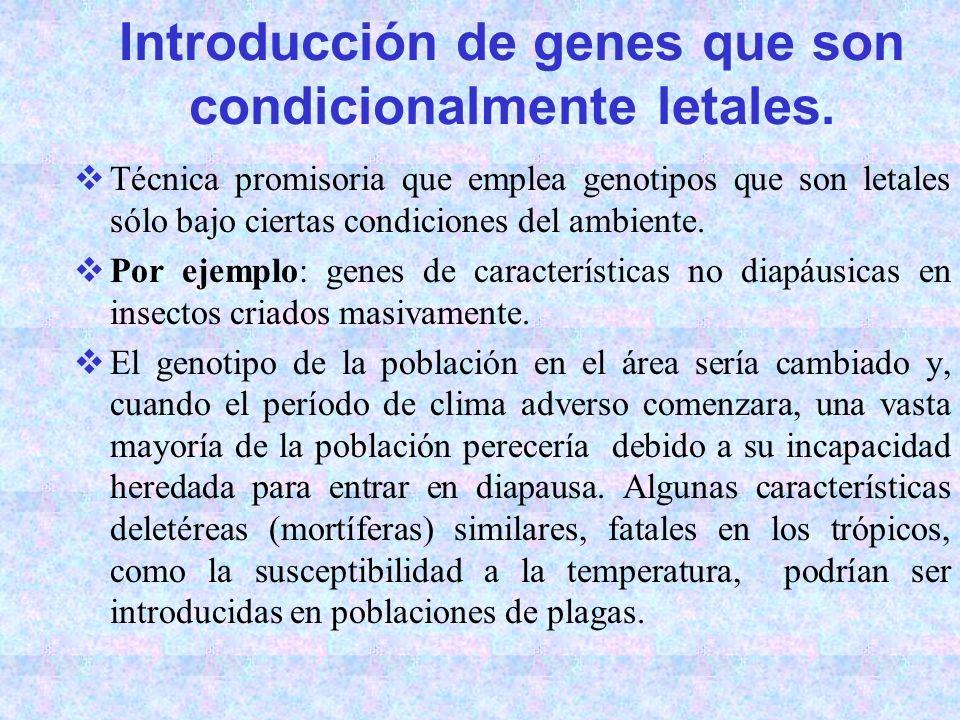 Introducción de genes que son condicionalmente letales.