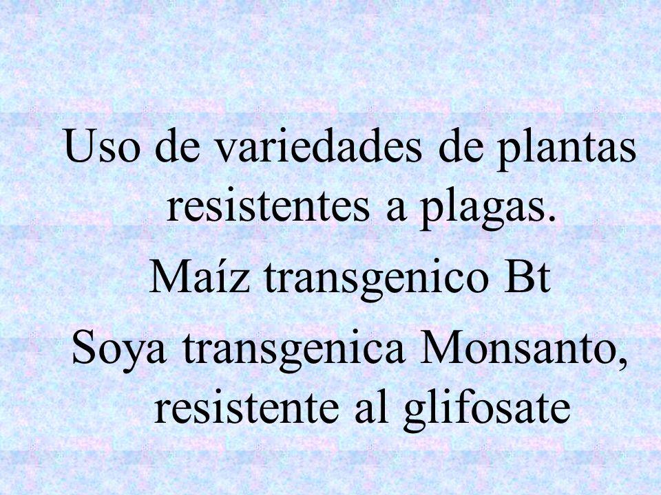 Uso de variedades de plantas resistentes a plagas. Maíz transgenico Bt