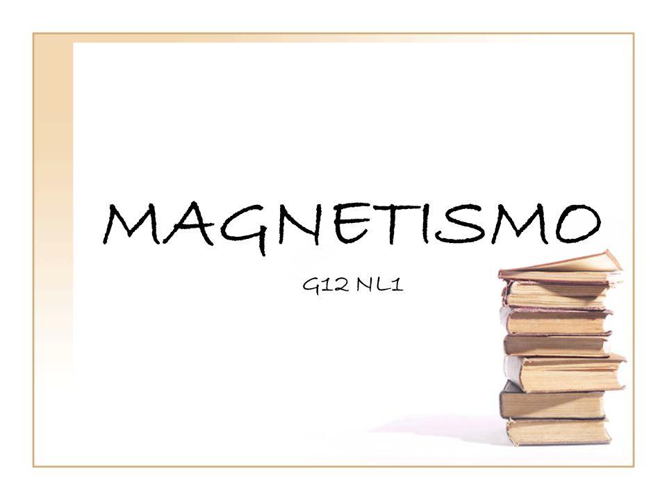 MAGNETISMO G12 NL1