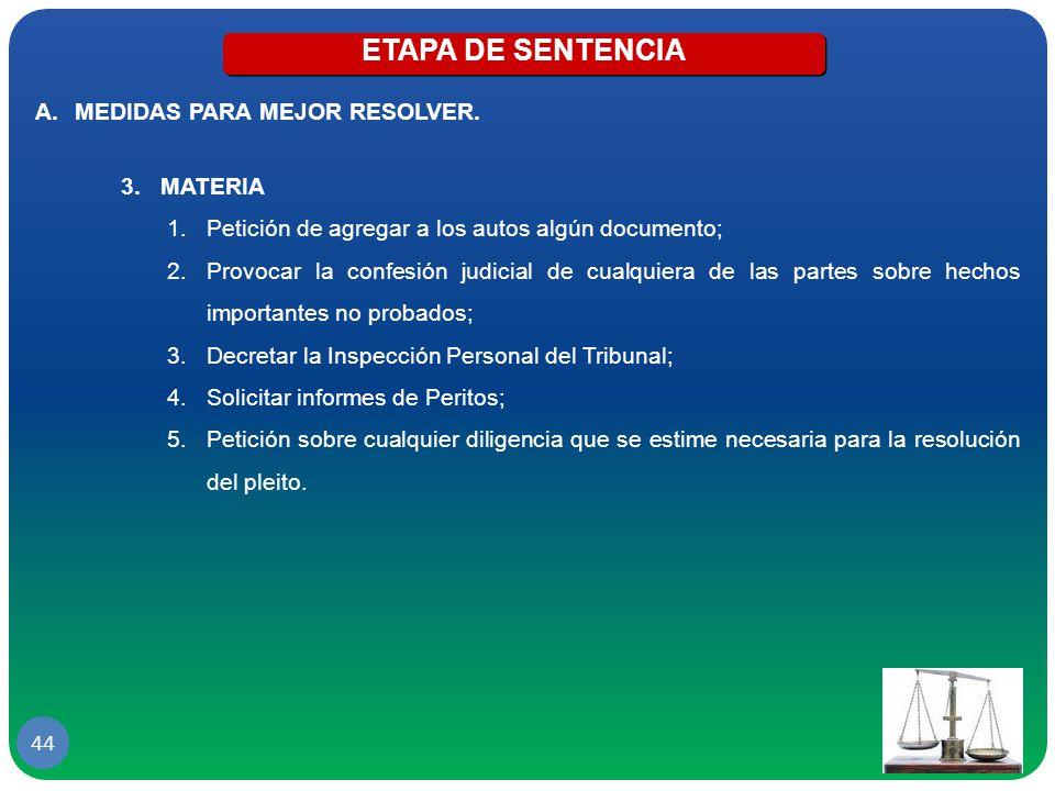 ETAPA DE SENTENCIA MEDIDAS PARA MEJOR RESOLVER. MATERIA