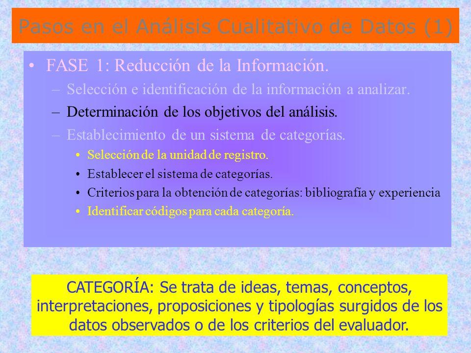 Pasos en el Análisis Cualitativo de Datos (1)