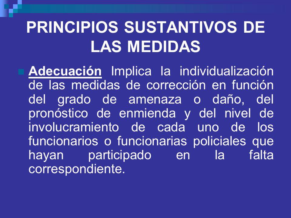 PRINCIPIOS SUSTANTIVOS DE LAS MEDIDAS