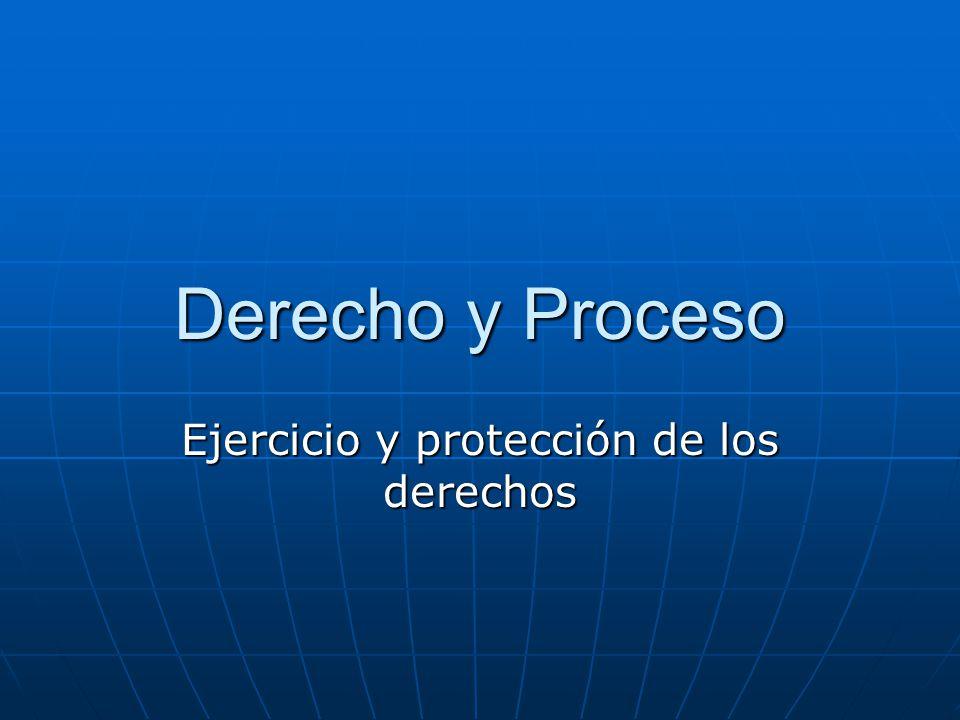 Ejercicio y protección de los derechos