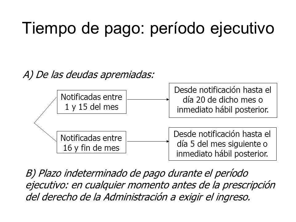 Tiempo de pago: período ejecutivo