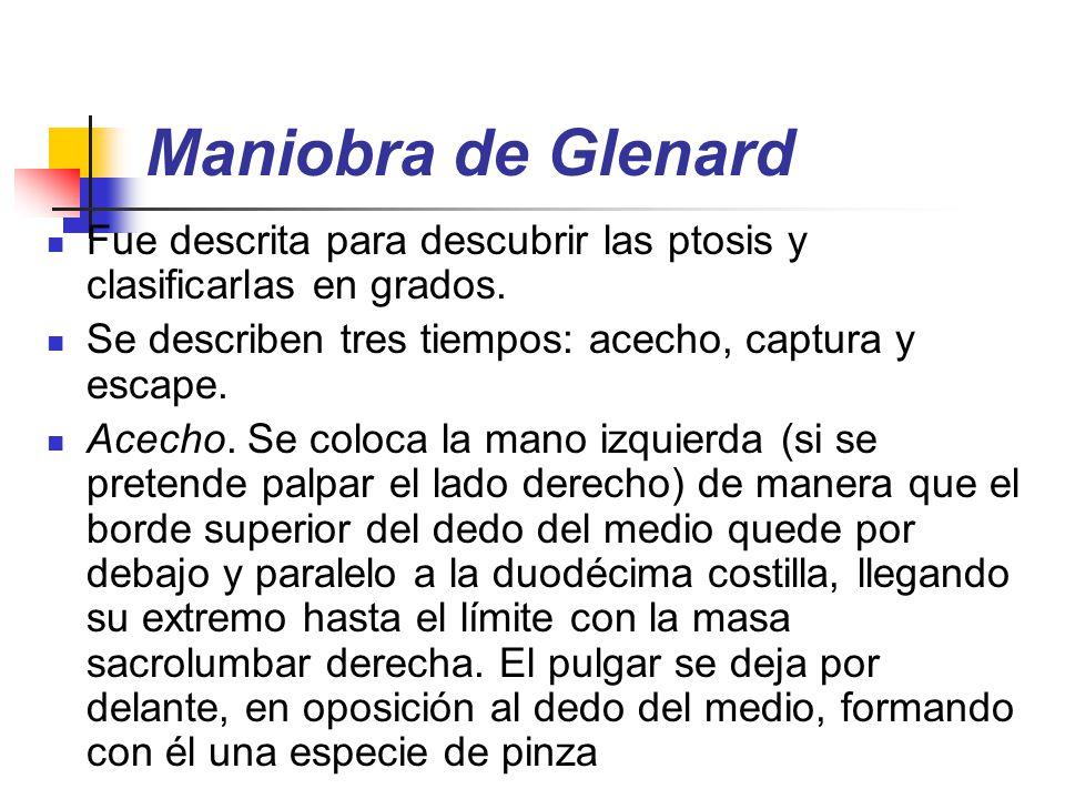 Maniobra de Glenard Fue descrita para descubrir las ptosis y clasificarlas en grados. Se describen tres tiempos: acecho, captura y escape.