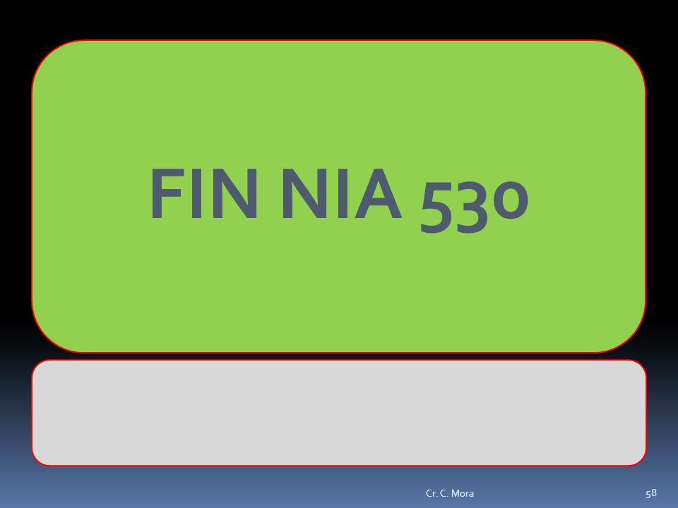 FIN NIA 530 Cr. C. Mora