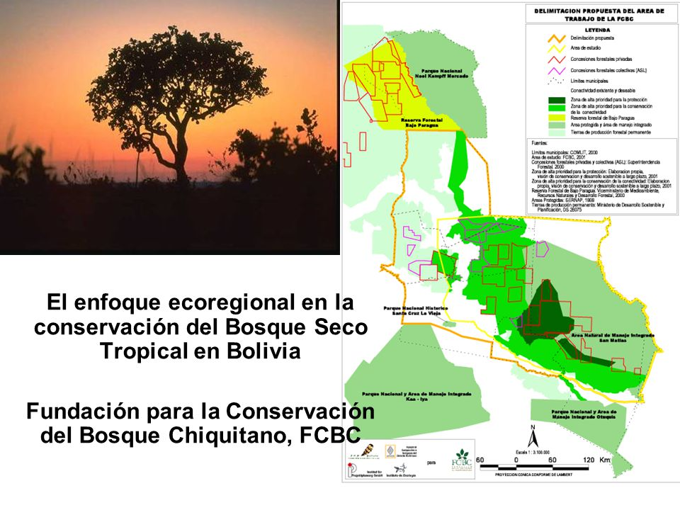 Fundación para la Conservación del Bosque Chiquitano, FCBC