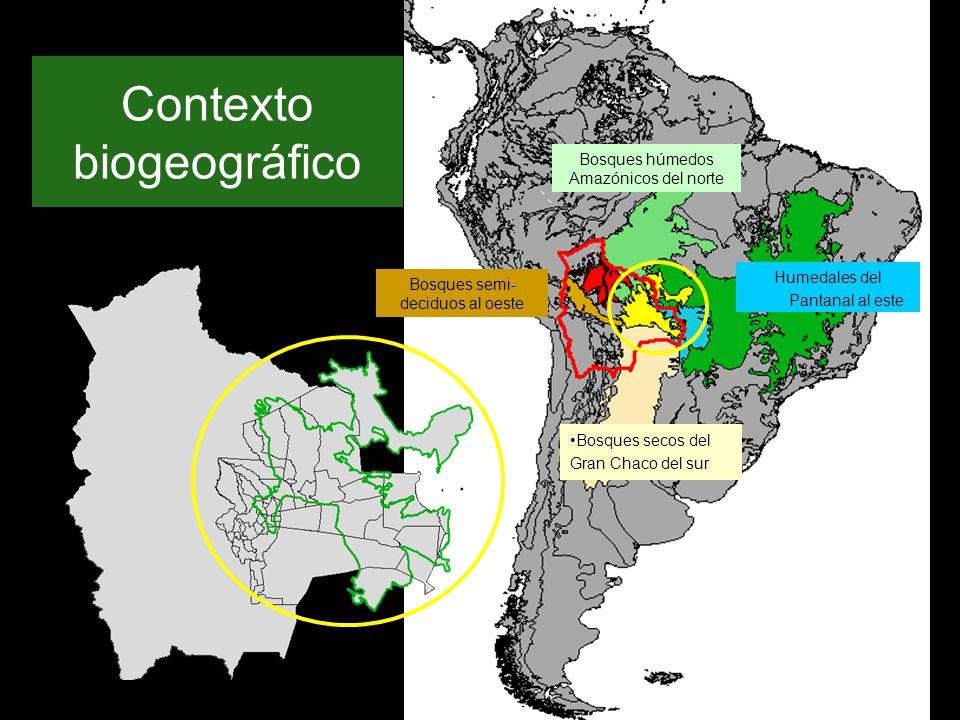 Contexto biogeográfico