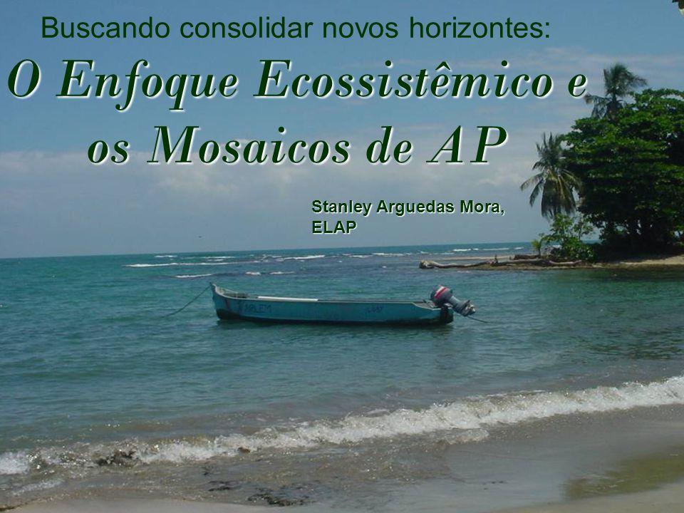 Buscando consolidar novos horizontes: O Enfoque Ecossistêmico e os Mosaicos de AP