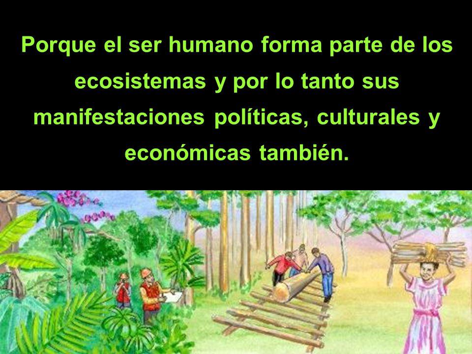 Porque el ser humano forma parte de los ecosistemas y por lo tanto sus manifestaciones políticas, culturales y económicas también.