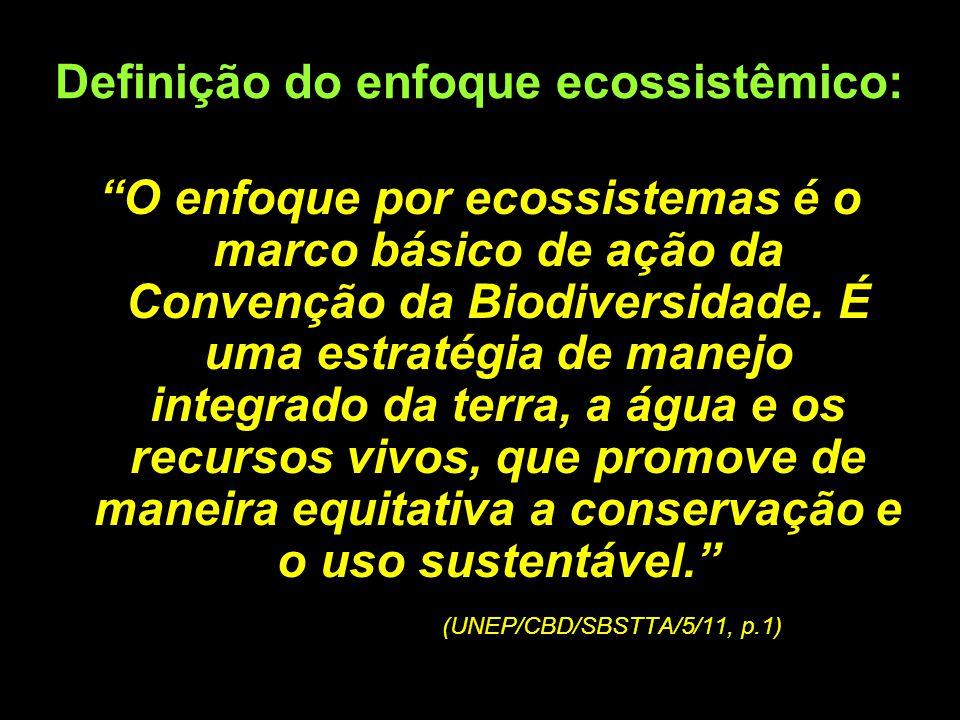 Definição do enfoque ecossistêmico: