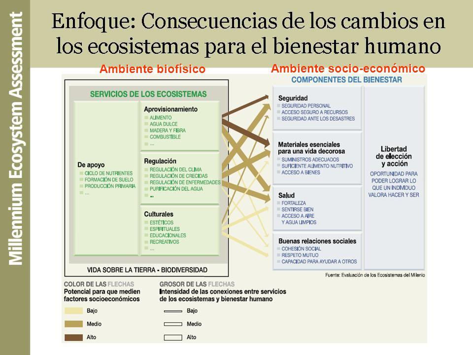 Ambiente biofísico Ambiente socio-económico