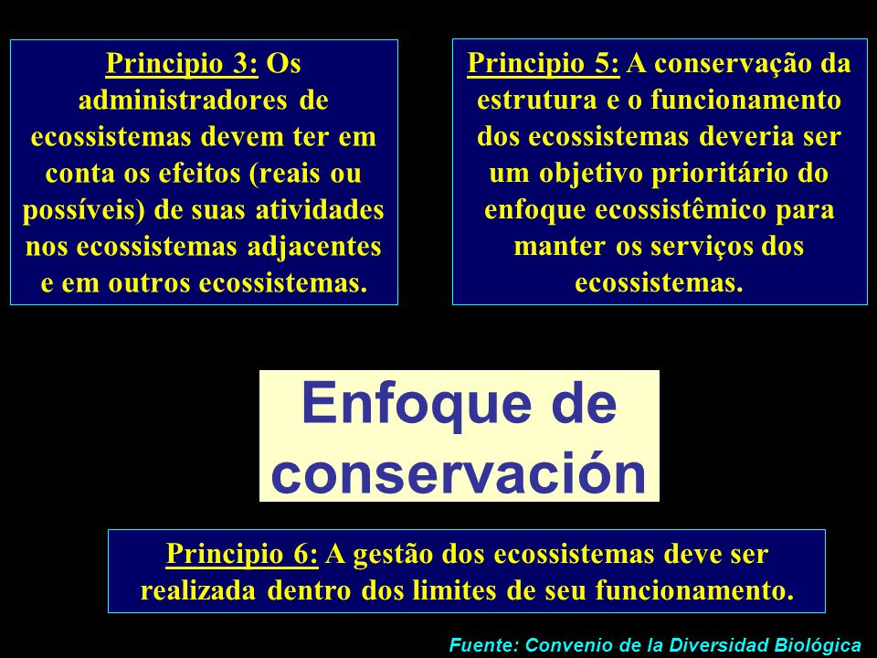 Enfoque de conservación