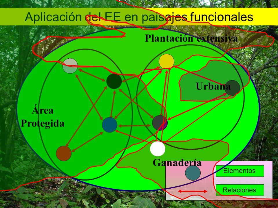 Aplicación del EE en paisajes funcionales