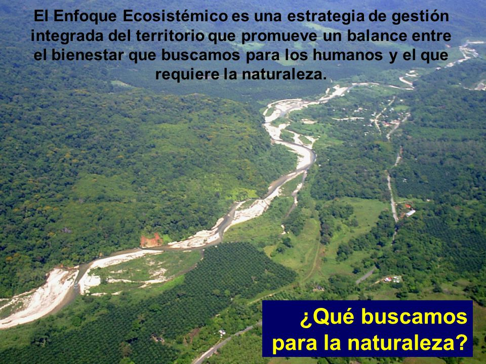 ¿Qué buscamos para la naturaleza