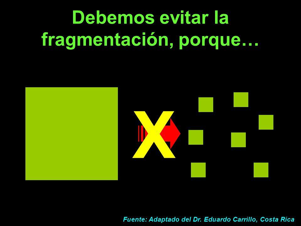 Debemos evitar la fragmentación, porque…