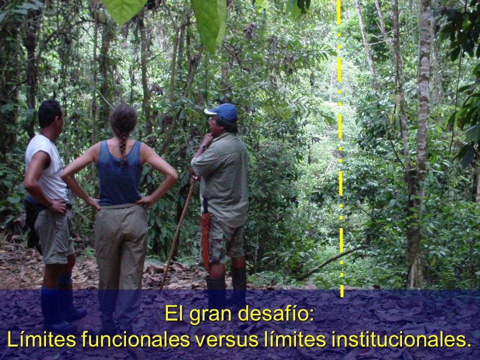 El gran desafío: Límites funcionales versus límites institucionales.