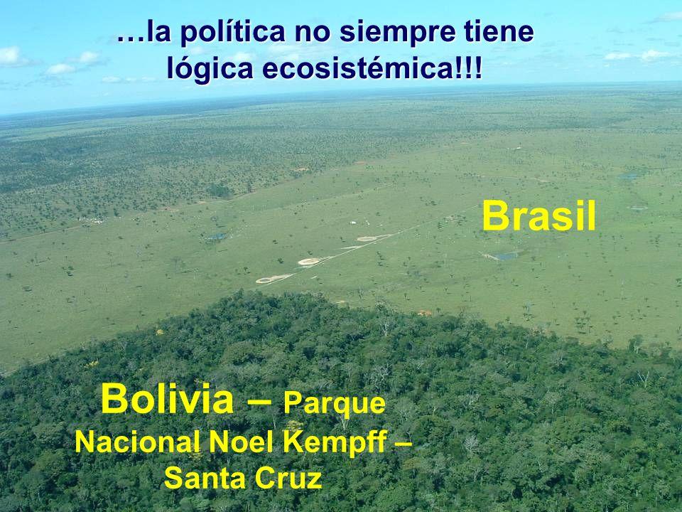 Brasil Bolivia – Parque Nacional Noel Kempff – Santa Cruz