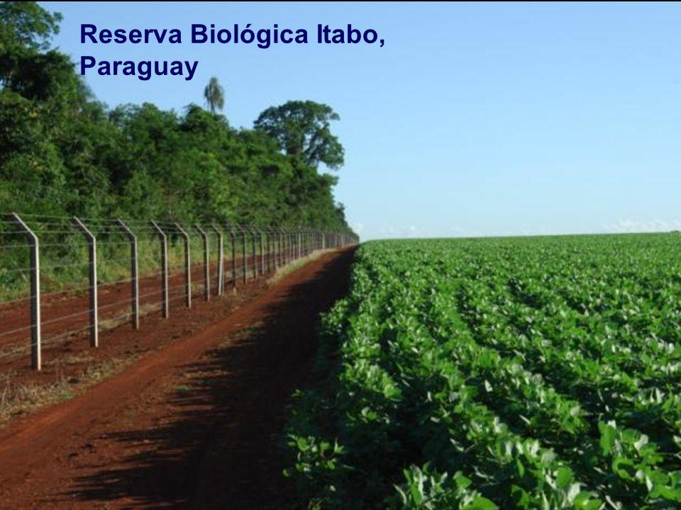 Reserva Biológica Itabo, Paraguay