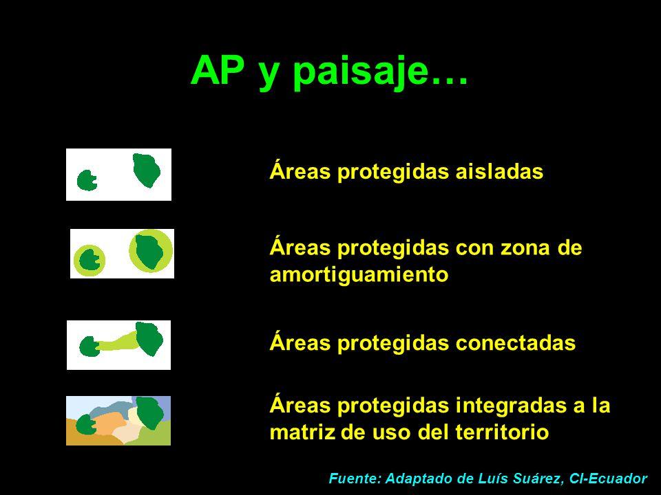 AP y paisaje… Áreas protegidas aisladas